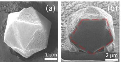 Scanning electron micrograph of polymerized icosahedra and its cross-sectional cut next to it